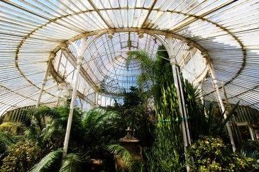Palm House, Belfast